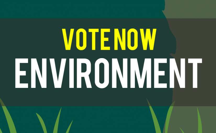 Which environmental charity should we support in Easter 2017?